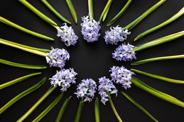花の組成-暗いコントラストの背景に春の花ヒヤシンスとラウンドフレーム。グリーティングカードのコピースペースを持つトップビュー