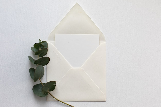 白い封筒、空白カード、ホワイトペーパーの背景にユーカリの小枝とフラットレイアウト構成。