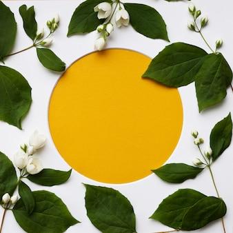 Шаблон из зеленых листьев, цветущих белых цветов и круглая рамка на белом фоне