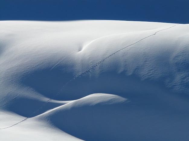 雪災い冬雪の吹きだまりハイメサ