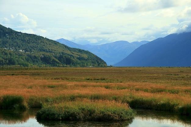 アラスカ山脈の森の木が風景をツンドラ