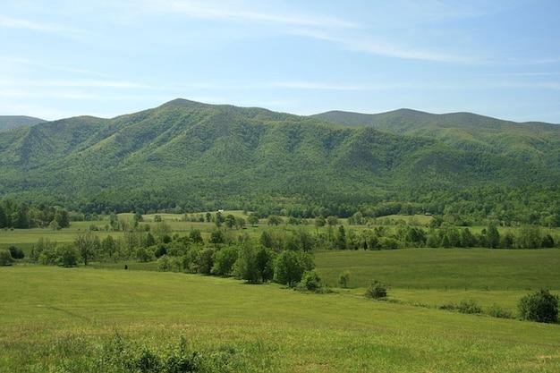 スモーキースモーキー山、風景、テネシー州