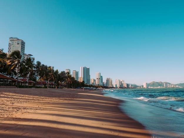 Побережье с пальмами и небоскребами. пляж на закате возле океана