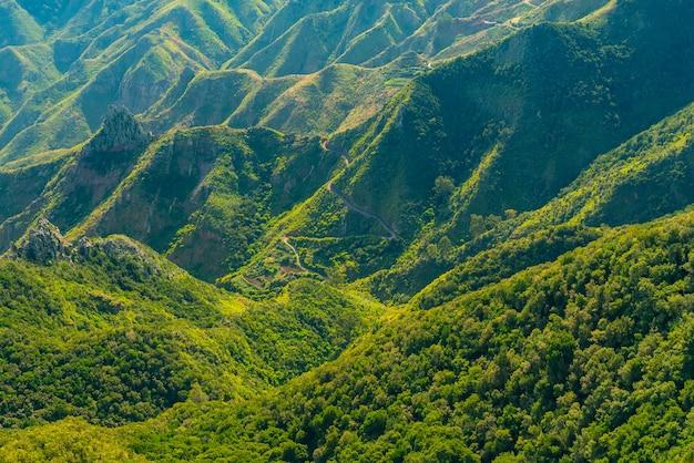 晴れた日、テネリフェ島、スペインのアナガ農村公園の森と曲がりくねった道で覆われた風光明媚な山