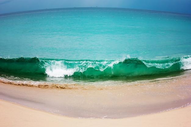 海岸線と海