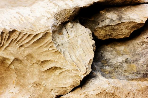 石のテクスチャと自然な背景