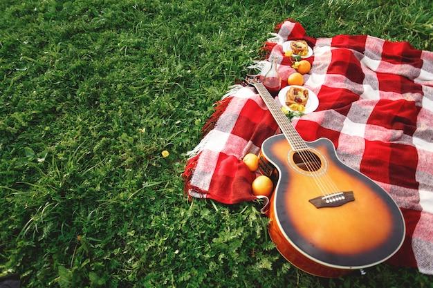 芝生の上のギター音楽とピクニック