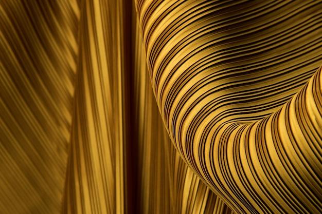 Плиссированная ткань в длинную линию драпировки с тенью
