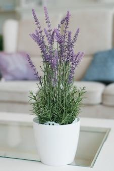 リビングルームまたは寝室のインテリアにある装飾的な白い花瓶のラベンダー