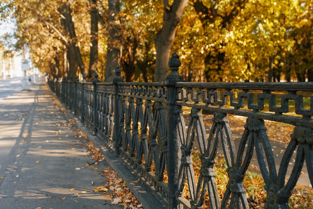 Чугунная ограда городского парка, осенние деревья и листья на асфальте