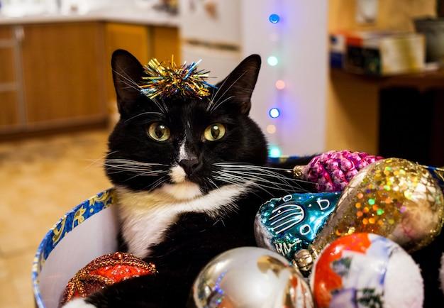 Черно-белая кошка лежит в круглой коробке с елочными игрушками.