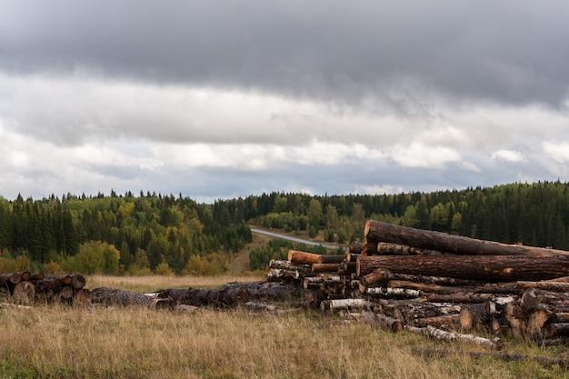 曇りの秋の風景。伐採された木、森、暗い空の倉庫。