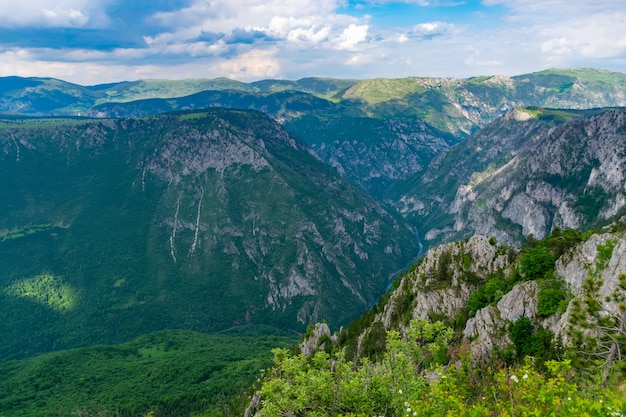 Река тара протекает в глубине каньона среди гор