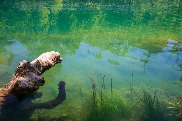 巨大な古い障害が水面下に突き出ています。