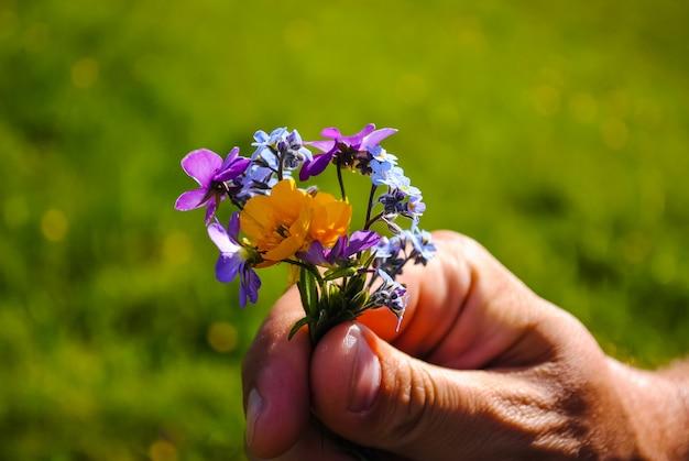 美しい花はいつも休日です