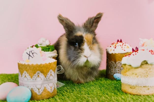パステルカラーの着色された卵と甘いカップケーキとピンクの背景と新鮮な草のイースターケーキとイースターのウサギのウサギ。イースター休暇の概念