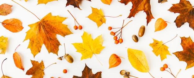 白の上に秋のフラットレイの背景