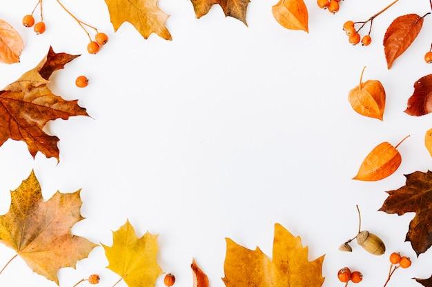 Осенний плоский фон на белом фоне