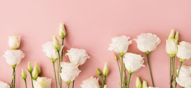 Белые цветы на розовом фоне