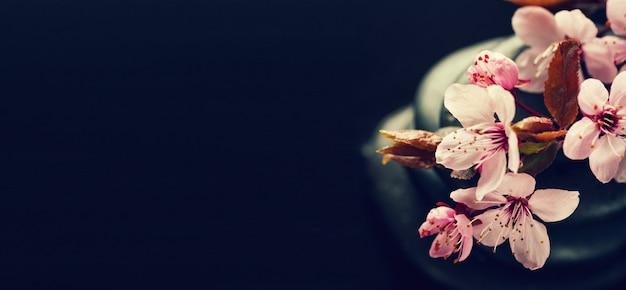 花とスパの暗い背景
