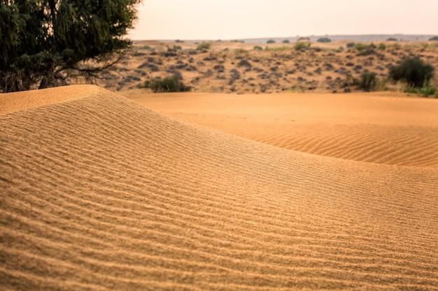 砂砂漠の夕日