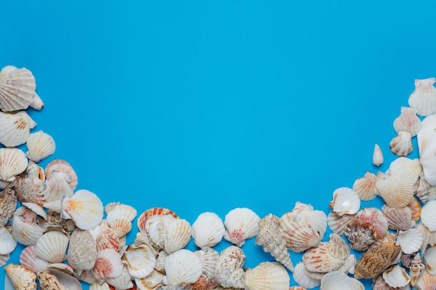 たくさんの素敵な海の貝殻の装飾的組成物