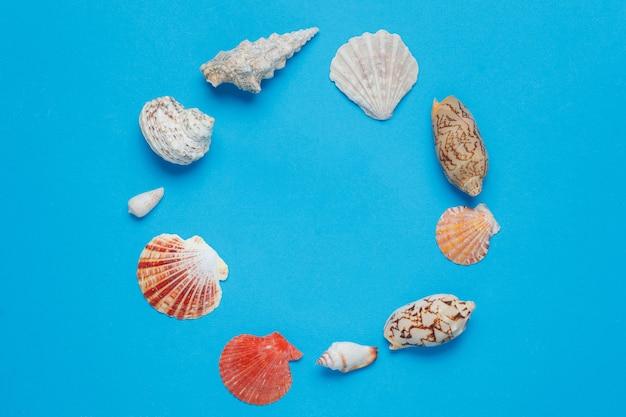 カラフルなエキゾチックな海の巻き貝のコレクションフラットレイアウト