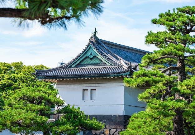 Императорский дворец с деревом в дневное время в токио, япония.