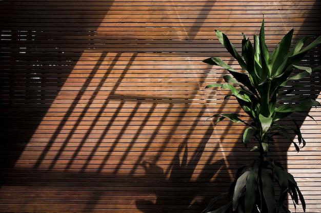 木製の壁に午後の影
