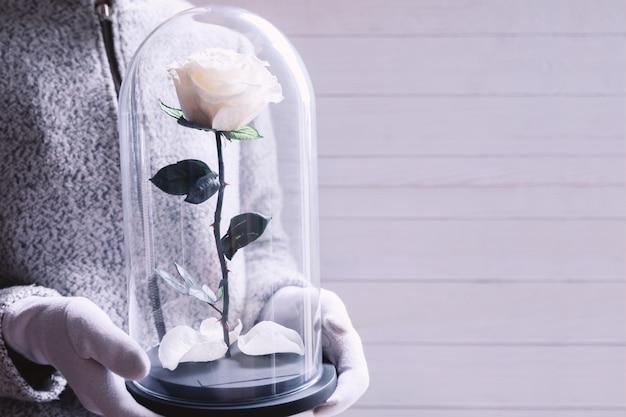 フラスコに白いバラを保持している女性