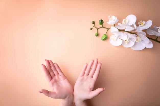 ファッション、マニキュア、ネイルケア、白い蘭の花、健康な肌、自然化粧品の女性の手。粉状の背景と対照的な平面図。