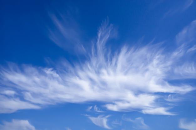 Голубое солнечное летнее небо, перообразные облака, атмосферное явление. пейзажные воздушные формы.