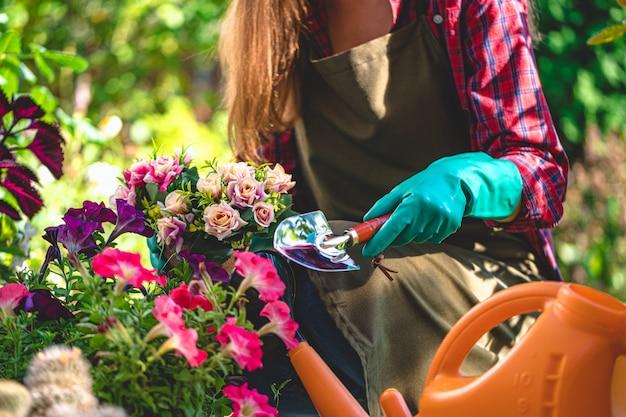 Садовник в перчатках растений и цветков на цветнике в домашнем саду. садоводство и цветоводство. уход за цветами