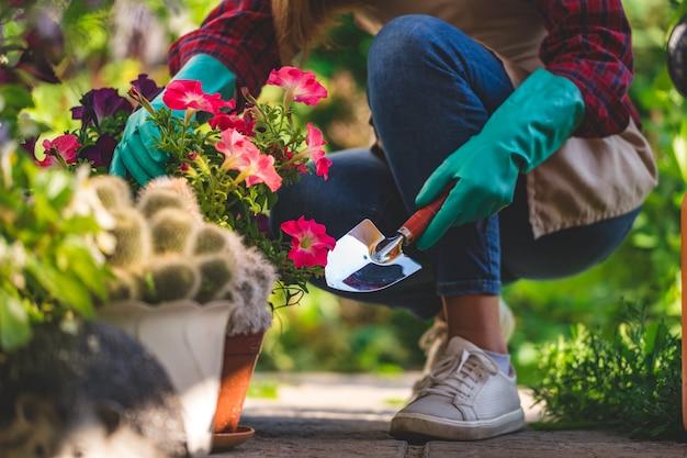 Женщина садовника в перчатках засаживает цветок петуньи в цветочном горшке в домашнем саде с лопаткоулавливателем. садоводство и цветоводство. уход за цветами