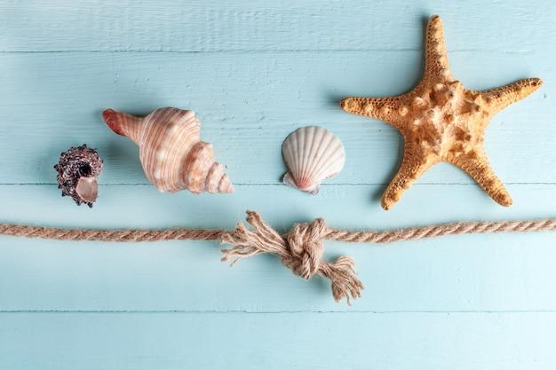 Морской узел и ракушки на синем, деревянном фоне. морское путешествие. отпуск, путешествия и морские путешествия.