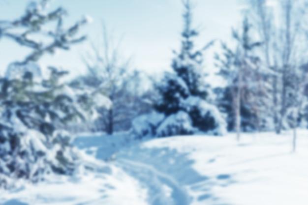 雪景色の写真がぼやけています。冬の森、セレクティブフォーカス。レイアウトとテンプレートの背景