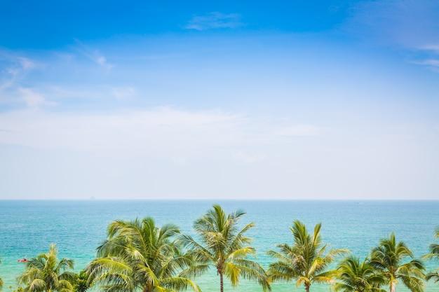 Море видно из выше с пальмами