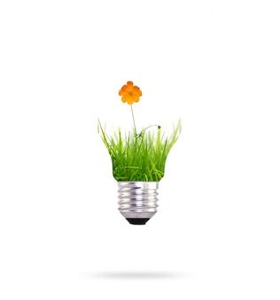 オレンジ色の花と再生可能エネルギー