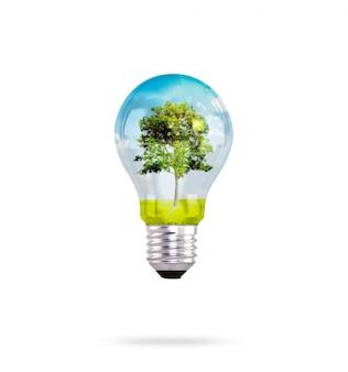Лампочка с деревом внутри