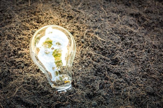 Лампа накаливания с растениеводством внутри