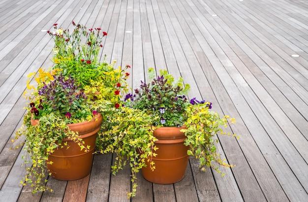 伝統的な木製の床で屋外の植物。