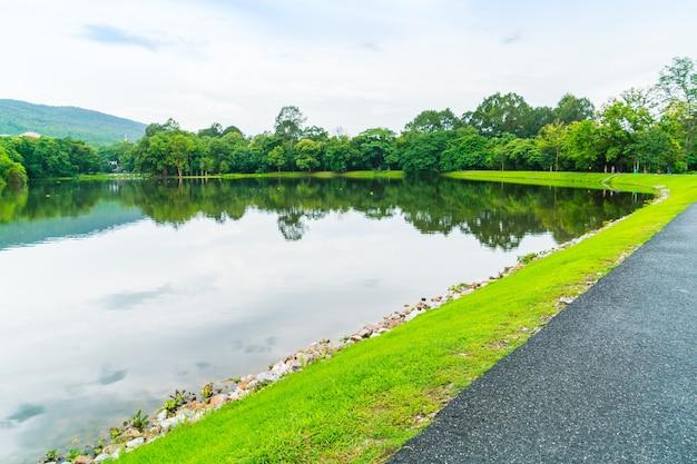 熱帯の風景の葉のフィールド湖