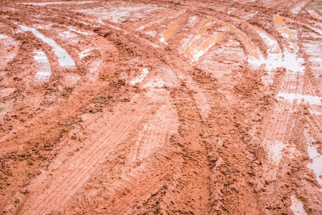 Трава земля грязь осень поле
