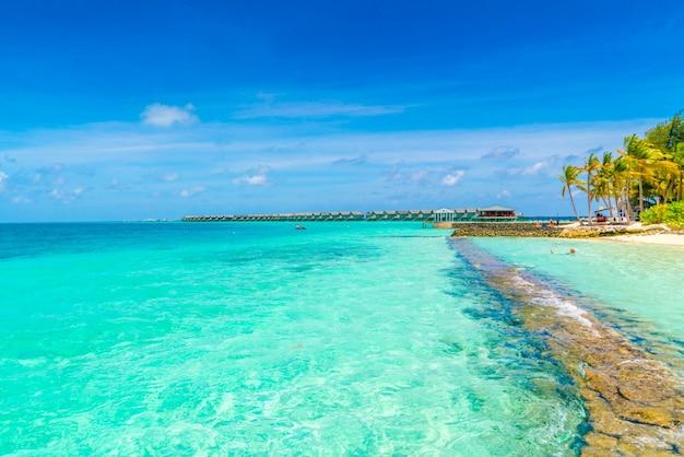 白い砂浜と海がある美しい熱帯のモルディブ島