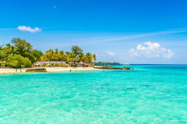 白い砂浜と海の美しい熱帯のモルディブの島。