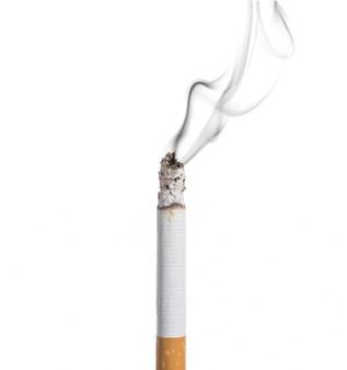 白い背景に燃えるたばこ