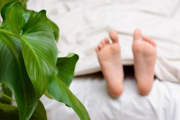 Маленькая девочка спит в своей постели рядом с зеленым цветком.