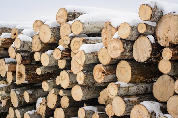 冬に売られるのを待っている木材の山。ポプラの森林伐採