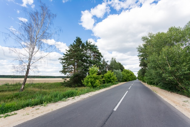 夏に建設された新しいアスファルト道路