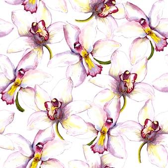 Бесшовные цветочный узор фона с белым цветком орхидеи ручная роспись акварельный рисунок